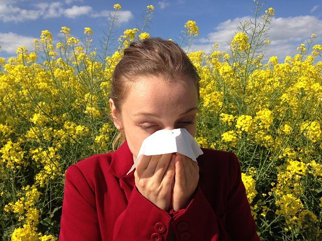 Allergien und Heuschnupfen
